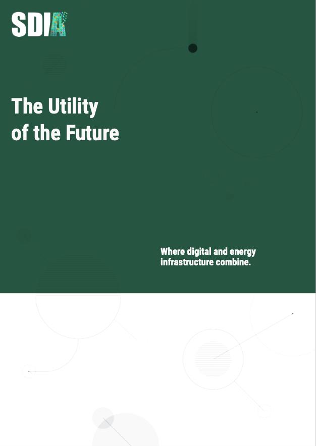 Cover of free executive summary